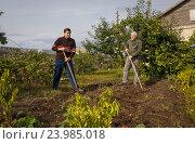 Купить «Двое мужчин работают в саду», фото № 23985018, снято 26 сентября 2016 г. (c) Акиньшин Владимир / Фотобанк Лори