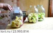 Купить «Woman prepares conserved stewed fruit for winter», видеоролик № 23993814, снято 23 июля 2016 г. (c) Володина Ольга / Фотобанк Лори