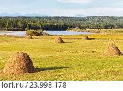 Купить «Стога сена на скошенном лугу у реки Иркут», фото № 23998178, снято 29 августа 2016 г. (c) Виктория Катьянова / Фотобанк Лори