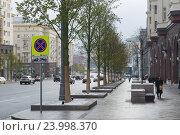 Купить «Липы на Тверской улице», фото № 23998370, снято 31 октября 2016 г. (c) Антон Белицкий / Фотобанк Лори