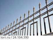 Купить «Кованная решетка покрытая инеем», фото № 24104390, снято 17 января 2011 г. (c) Голованов Сергей / Фотобанк Лори