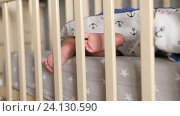 Купить «Baby sleeping an a crib with feet out of blanket and moving toes. Handheld shot», видеоролик № 24130590, снято 9 октября 2016 г. (c) Павел Котельников / Фотобанк Лори