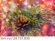 Купить «fir branch with christmas ball and pinecone», фото № 24131830, снято 1 октября 2015 г. (c) Syda Productions / Фотобанк Лори