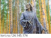 Купить «Скульптура Иисуса Христа», фото № 24145174, снято 2 февраля 2014 г. (c) Сергеев Валерий / Фотобанк Лори