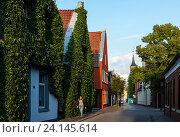 Leer, Germany, with ivy-covered residential house (2014 год). Редакционное фото, агентство Caro Photoagency / Фотобанк Лори