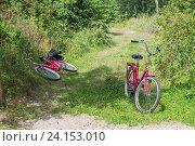 Два велосипеда на лесной тропе (2016 год). Редакционное фото, фотограф Ксения Семенова / Фотобанк Лори