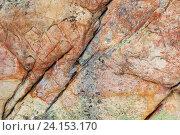 Купить «Поверхность камня. Текстура», фото № 24153170, снято 5 ноября 2016 г. (c) Александр Цуркан / Фотобанк Лори