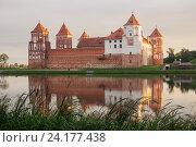 Купить «Grand view to Castle of Mir, Grodno Region, Belarus.», фото № 24177438, снято 22 июля 2016 г. (c) Майя Крученкова / Фотобанк Лори