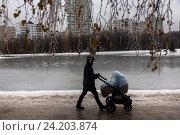 Купить «Мама идет с коляской вдоль берега замерзшего пруда в зимнем парке города Москвы, Россия», фото № 24203874, снято 11 ноября 2016 г. (c) Николай Винокуров / Фотобанк Лори
