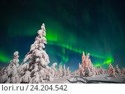 Купить «Северное полярное сияние», фото № 24204542, снято 7 января 2015 г. (c) Оксана Владимировна Грачева / Фотобанк Лори