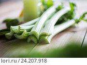 Купить «close up of celery stems», фото № 24207918, снято 5 августа 2016 г. (c) Syda Productions / Фотобанк Лори