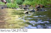 Купить «Текущая вода в лесной речке, на дальнем плане размытый лесной фон», видеоролик № 24211522, снято 10 июля 2016 г. (c) Иванов Алексей / Фотобанк Лори
