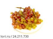 Купить «Кишмиш, виноград, еда», фото № 24211730, снято 13 ноября 2016 г. (c) Сергей Ли / Фотобанк Лори