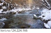 Купить «Река в снежном лесу, Черногория», видеоролик № 24224166, снято 21 января 2016 г. (c) Иван Кузнецов / Фотобанк Лори
