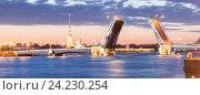 Купить «Разведенный Дворцовый мост во время белых ночей», фото № 24230254, снято 4 июня 2016 г. (c) Андреев Алексей / Фотобанк Лори