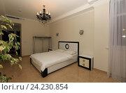 Купить «Интерьер современной спальни», эксклюзивное фото № 24230854, снято 16 октября 2016 г. (c) Яна Королёва / Фотобанк Лори