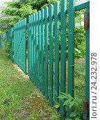 Забор из деревянного штакетника с воротами на садовом участке, фото № 24232978, снято 8 июня 2016 г. (c) Анатолий Заводсков / Фотобанк Лори