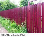 Купить «Забор из металлического евроштакетника с воротами на садовом участке», фото № 24232982, снято 8 июня 2016 г. (c) Анатолий Заводсков / Фотобанк Лори