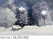 Купить «Winter night landscape- bench covered with snow among frosty winter trees and lights», фото № 24253942, снято 22 июля 2019 г. (c) Зезелина Марина / Фотобанк Лори