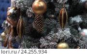 Купить «Новый год. Рождество. Дерево. Нарядная Новогодняя елка с игрушками, огни, подарки. Крупный, средний план, движение камеры.», видеоролик № 24255934, снято 23 ноября 2016 г. (c) Бубнов Дмитрий / Фотобанк Лори