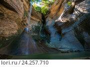 Купить «Шакуранский водопад во влажном самшитовом лесу в Абхазии», фото № 24257710, снято 2 октября 2016 г. (c) Матвей Солодовников / Фотобанк Лори