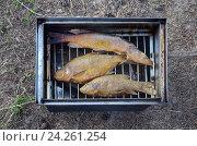 Купить «Копчение рыбы в коптильне на природе», эксклюзивное фото № 24261254, снято 4 августа 2016 г. (c) Елена Коромыслова / Фотобанк Лори