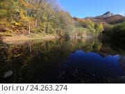Купить «Осенний лес у озера. Южная Демерджи, Крым», эксклюзивное фото № 24263274, снято 20 октября 2016 г. (c) Яна Королёва / Фотобанк Лори