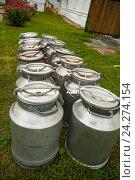 Много молочных бидонов, установленных в ряд. Стоковое фото, фотограф Борис Сунцов / Фотобанк Лори
