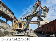 Купить «heavy excavator loading gravel into train for rail freightage», фото № 24275610, снято 9 сентября 2016 г. (c) Дмитрий Калиновский / Фотобанк Лори