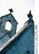 Силуэт ворона на готическом кресте англиканской церкви Святой Стефан в Негомбо Шри Ланка, фото № 24275990, снято 1 ноября 2009 г. (c) Эдуард Паравян / Фотобанк Лори