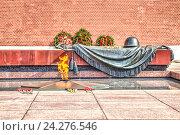 Купить «Москва. Могила неизвестного солдата», фото № 24276546, снято 2 мая 2016 г. (c) Parmenov Pavel / Фотобанк Лори