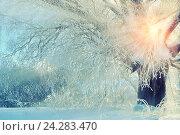 Купить «Зимний пейзаж с заснеженным деревом и пробивающимися лучами солнца», фото № 24283470, снято 11 января 2010 г. (c) Зезелина Марина / Фотобанк Лори