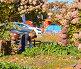 Молодой садовник работает в парке, фото № 24289186, снято 5 октября 2016 г. (c) Валерия Попова / Фотобанк Лори