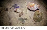 Купить «Археология,  археологические находки», видеоролик № 24290870, снято 8 июля 2020 г. (c) Vitalii Popov / Фотобанк Лори