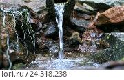 Купить «Печерский  источник святой воды в Турово, Ленинградская область», видеоролик № 24318238, снято 1 декабря 2016 г. (c) Ирина Мойсеева / Фотобанк Лори