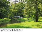 Купить «Germany, Saxony clue, guards King's cathedral Dessau-Wörlitz, land cape guards the Luisium, UNESCO World Heritage», фото № 24320254, снято 7 сентября 2011 г. (c) mauritius images / Фотобанк Лори