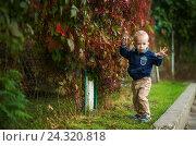 Мальчик стоит около красных листьев (2016 год). Редакционное фото, фотограф Елена Ганненко / Фотобанк Лори