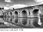 Купить «Roman bridge, Guadiana River, Merida, Extremadura, Spain, Europe», фото № 24321178, снято 17 июля 2018 г. (c) mauritius images / Фотобанк Лори