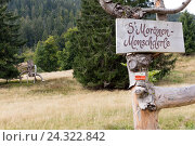 Germany, Baden-Württemberg, Black Forest, Menzenschwand, tree figure with sign, фото № 24322842, снято 25 сентября 2017 г. (c) mauritius images / Фотобанк Лори