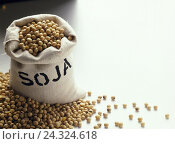 Купить «Pouch, soy beans, Still life, soy, soy bean, soy beans, legumes, glycines spec., cultivated plant, food, nutrition, healthy, rich in protein, proteins...», фото № 24324618, снято 21 января 2002 г. (c) mauritius images / Фотобанк Лори