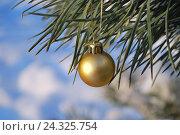 Купить «Новогодняя елочная игрушка на веточке сосны  на фоне снега», фото № 24325754, снято 3 января 2010 г. (c) Татьяна Савватеева / Фотобанк Лори