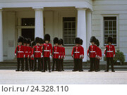 Купить «Great Britain, London, Buckingham, Palace, Guardsman, changing the guard, Europe, Buckingham-Palace, person, men, guard, uniform, bearskins, caps, headgear, tradition, royal guard,», фото № 24328110, снято 22 января 2007 г. (c) mauritius images / Фотобанк Лори