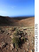 Купить «Area Montana Calderata, gone out volcano craters, national park Timanfaya, Parque Nacional de Timanfaya, Montañas del Fuego, fire mountains, Lanzarote, Canary islands, Spain», фото № 24331670, снято 27 ноября 2013 г. (c) mauritius images / Фотобанк Лори