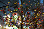 Новогоднее украшение деревьев на Красной площади, у ГУМа. Москва, эксклюзивное фото № 24335422, снято 2 декабря 2016 г. (c) Андрей Дегтярёв / Фотобанк Лори