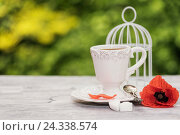 Купить «Florales, Still life, coffee cup with poppy on wooden springboard, in the background bird's card cage and green Bokeh,», фото № 24338574, снято 19 мая 2016 г. (c) mauritius images / Фотобанк Лори