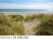 Купить «Path too Baltic Sea Beach, Katholm Beach, Grenaa, East Jutland, Denmark», фото № 24346626, снято 16 августа 2018 г. (c) mauritius images / Фотобанк Лори