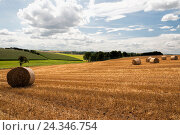 Купить «Field scenery, harvested, straw bales, late summers, heavens, clouds,», фото № 24346754, снято 9 августа 2014 г. (c) mauritius images / Фотобанк Лори