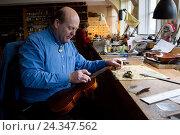 Купить «Violin making Winterling: Occupational report with violin making champion Eduard Schwen,», фото № 24347562, снято 3 декабря 2015 г. (c) mauritius images / Фотобанк Лори