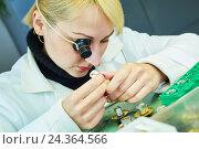 Купить «Watch production or clock repair», фото № 24364566, снято 30 ноября 2016 г. (c) Дмитрий Калиновский / Фотобанк Лори