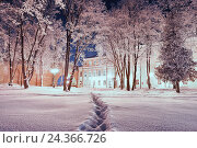 Winter landscape - city winter park covered with frosted trees and snow in the night, фото № 24366726, снято 18 января 2017 г. (c) Зезелина Марина / Фотобанк Лори